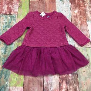 Gap Girls 0 3 6 12 18 24 Months Purple Tutu Dress